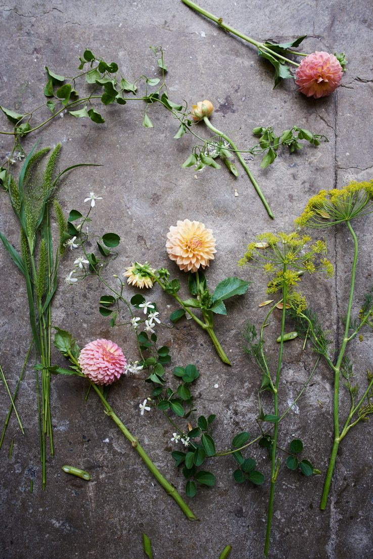 Behind the scenes with florist Amy Merrick west elm