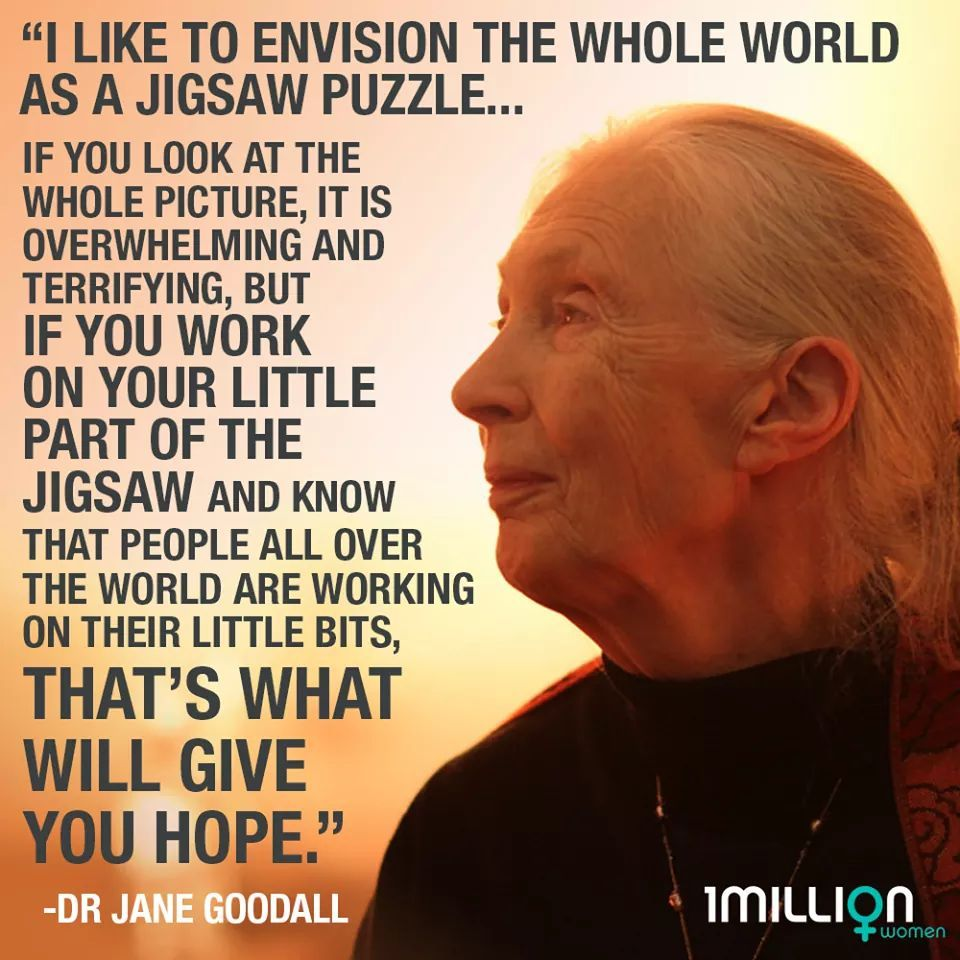 Pin by Sadie on For the Love of Nature Jane goodall