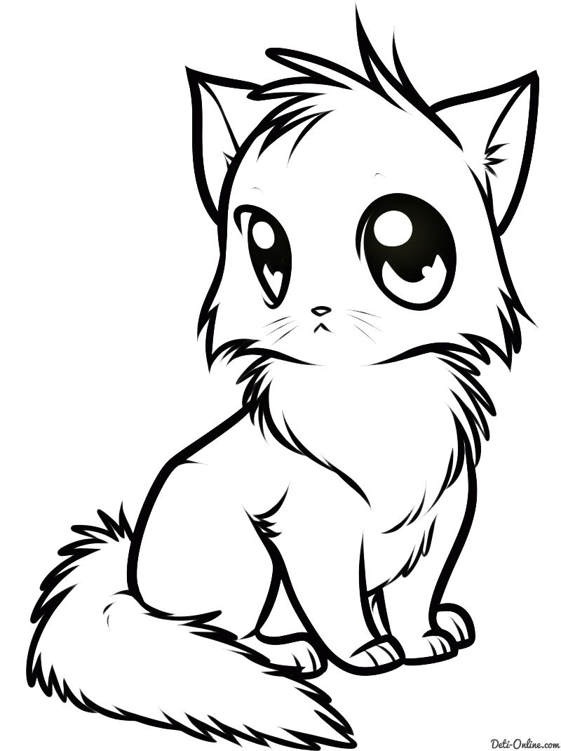 Милый аниме котик 😸 | Котята, Аниме
