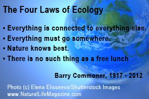 Image result for barry commoner quotes