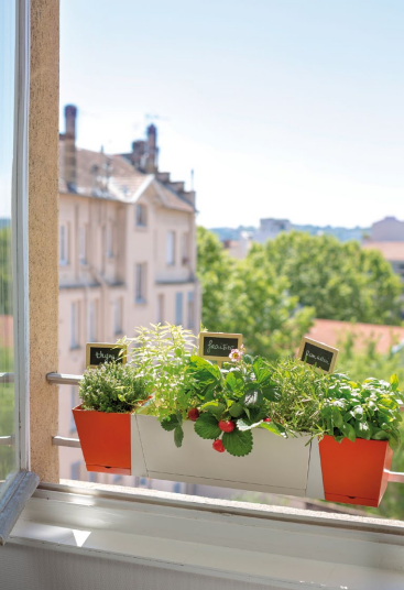 une jardini re pour r colter vos fraises bio et herbes aromatiques bio sur votre balcon en ville. Black Bedroom Furniture Sets. Home Design Ideas