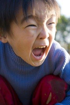 自分 の 思い通り に ならない と 怒る キレる子供、思い通りにならないとすぐ怒る子の心理と対応法