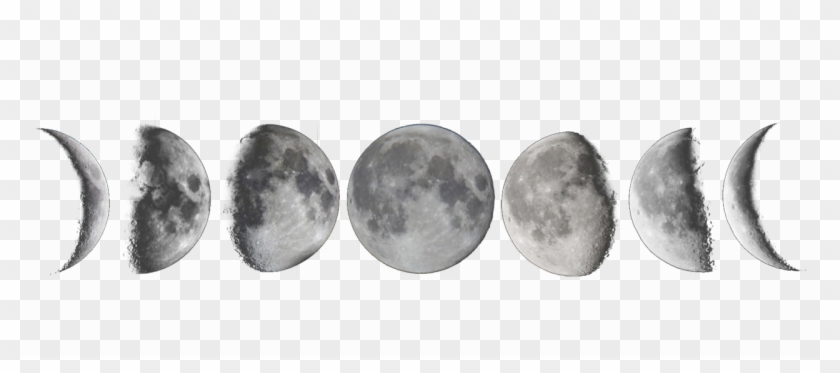 Image For Moon Phases Tumblr Transparent Lunas Tattoo Moon Phases White Backg Luna Tattoo Moon Phases Moon Phases Tattoo