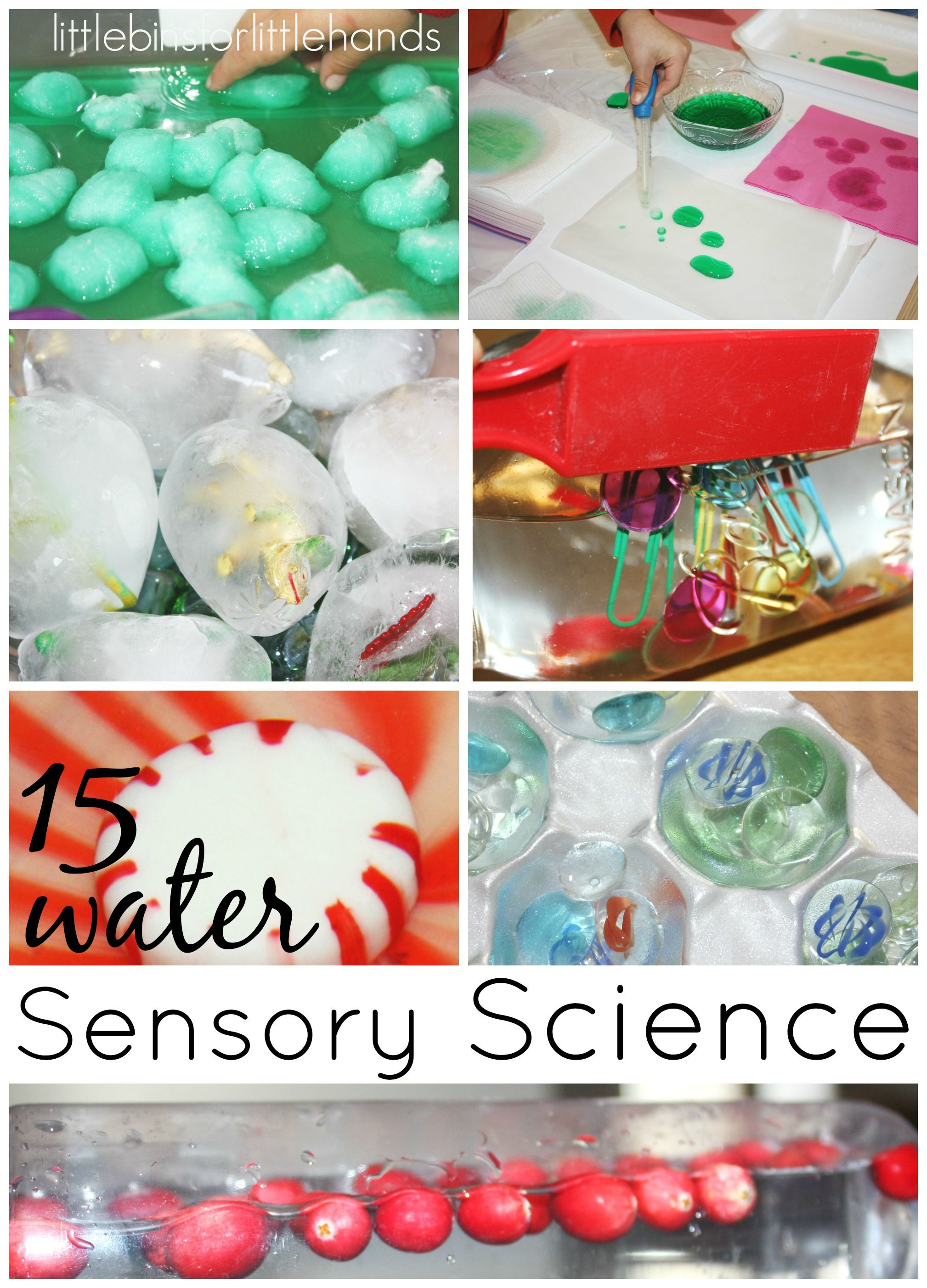 Water Sensory Science Play For Kids