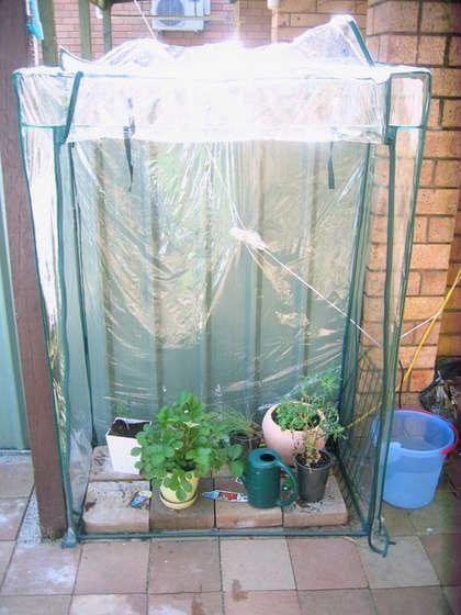 Brilliant! Put a portable closet over your hydroponic