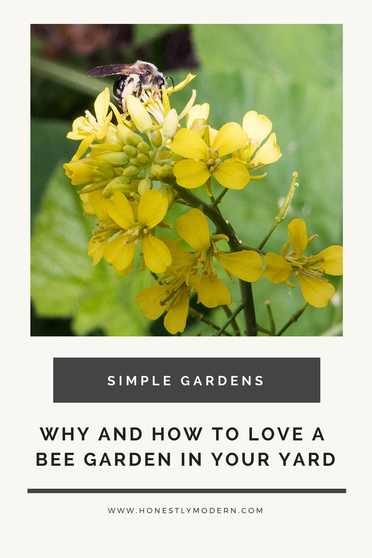 Why And How To Love A Bee Garden In Your Yard | Garden ...