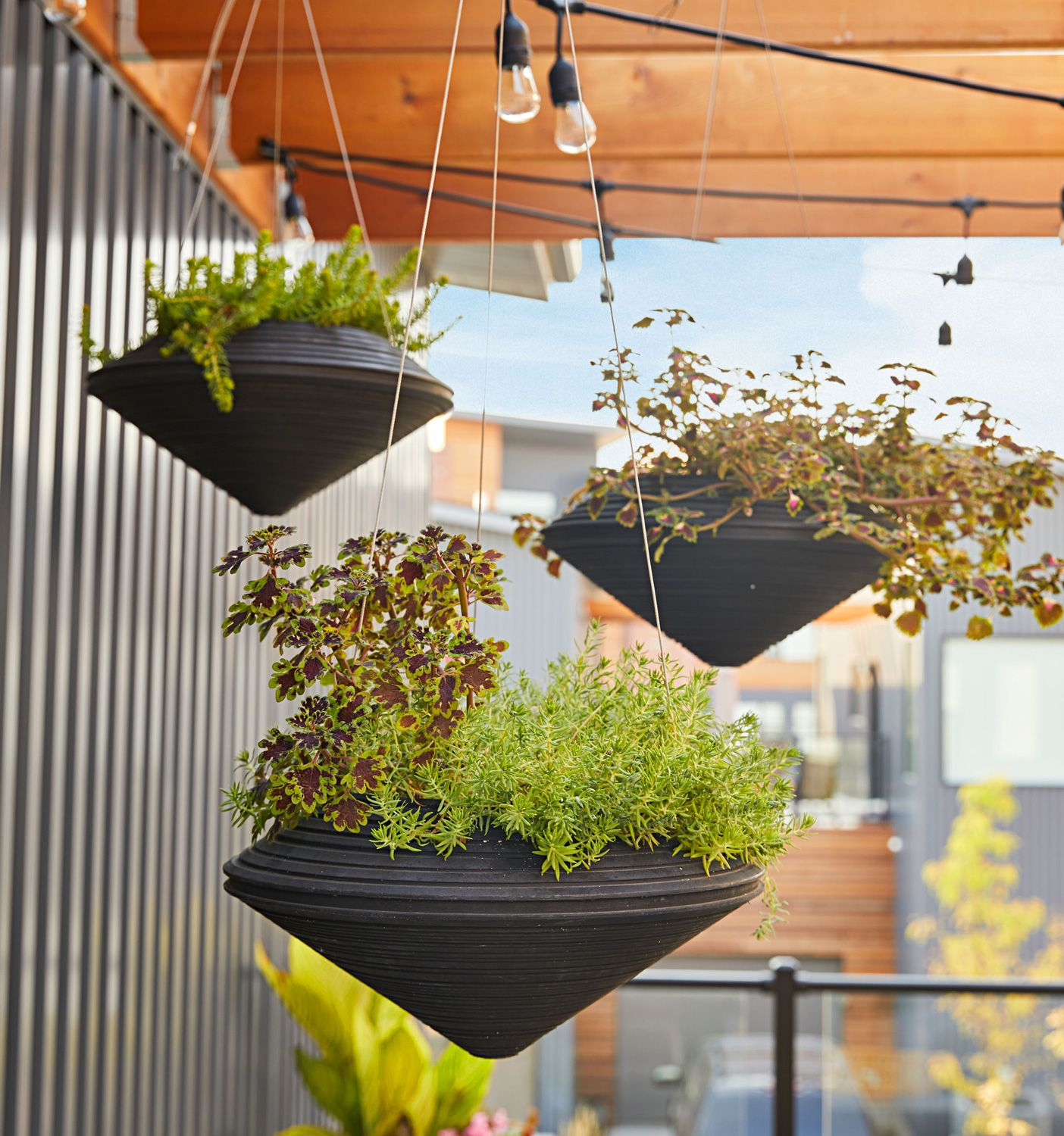 Container Gardening, Porch