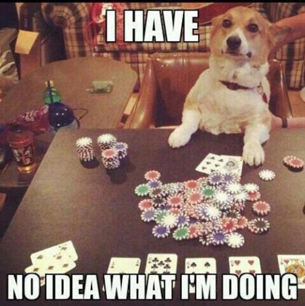 Mlife gambling