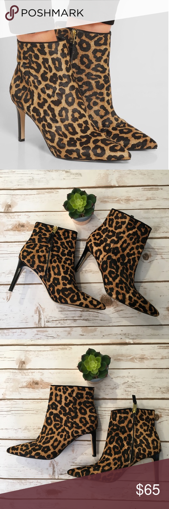 429b930e49472 Sam Edelman Karen Calf Hair Booties Leopard Size 7 Gorgeous and sexy leopard  print Karen booties