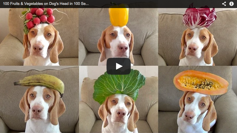 Funny Friday: 100 Fruits & Vegetable In 100 Seconds (VIDEO) ~ via http://foodmatters.tv/content/funny-friday-100-fruits-vegetables-in-100-seconds-video
