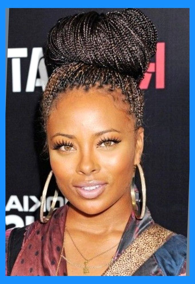Micro Braids Updo Hairstyles Actual Hairstyles Micro Braids Updo