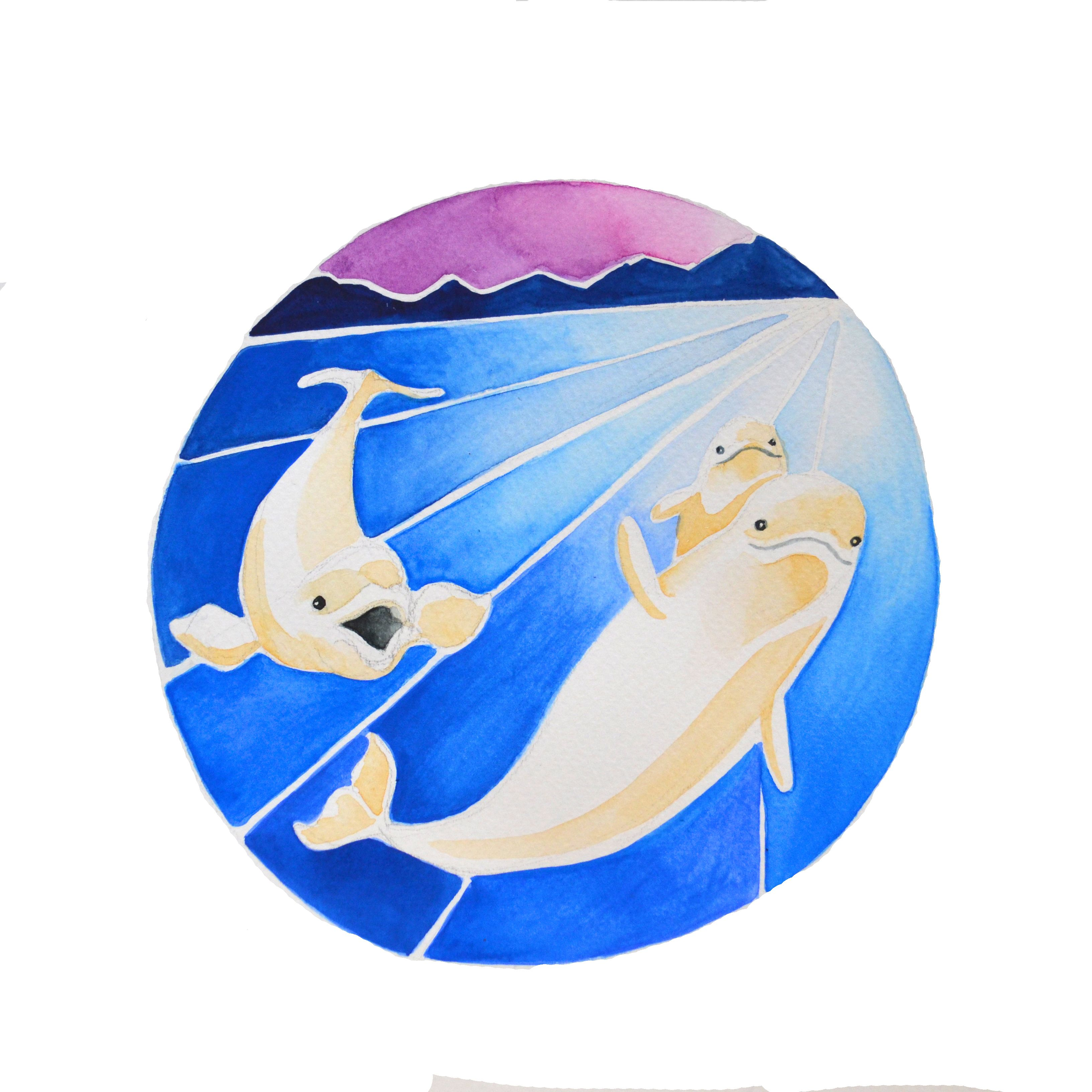 Beluga Whales- Holiday Card                         $5.00                                                    Canadian Animal Families, from a watercolour series by Marisa Pahl.