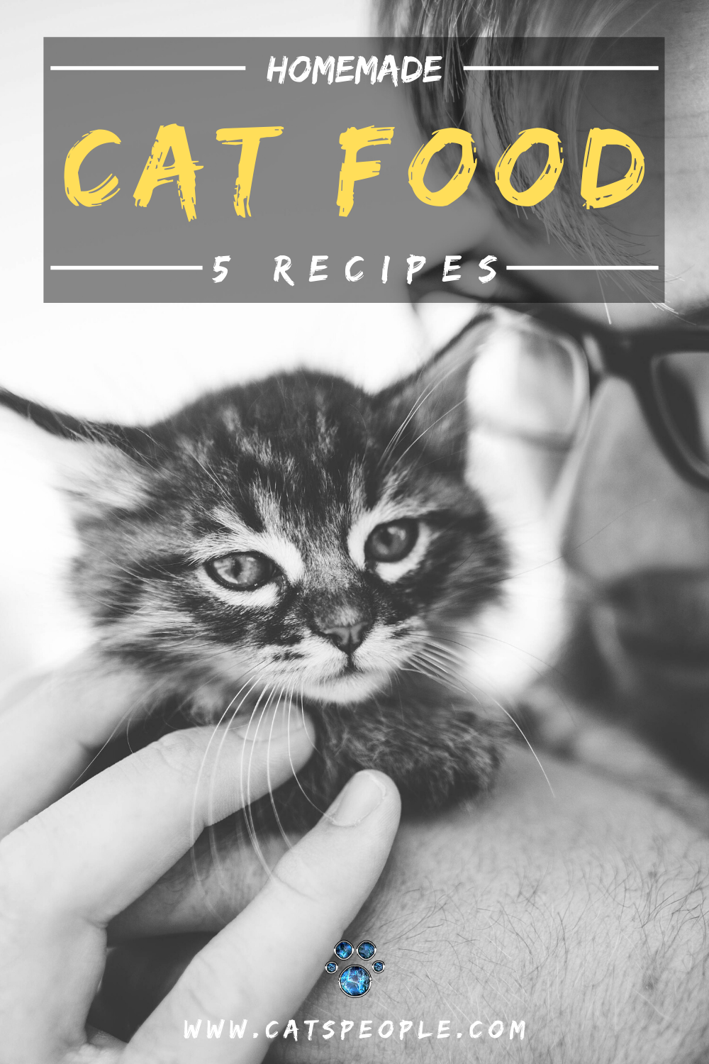 5 Homemade Cat Food Recipes Easy Cheap And Fun To Make In 2020 Homemade Cat Food Homemade Cat Best Cat Food
