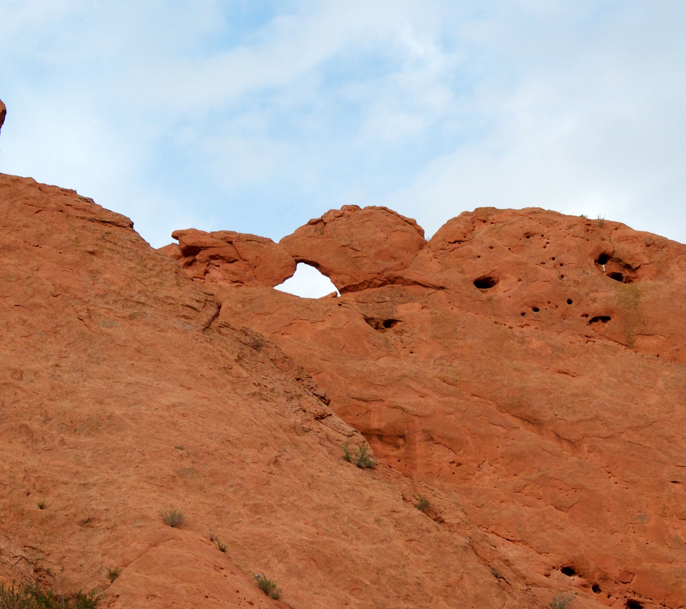 Kissing Camels At The Garden Of The Gods Colorado Springs Co