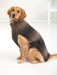 Free Knitting Pattern For Large Dog Sweater Google Search