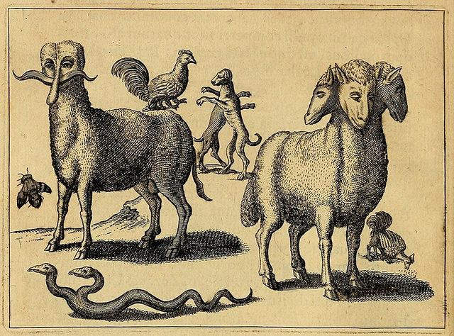 Fortunio Liceti, 'Monstruos', 1665