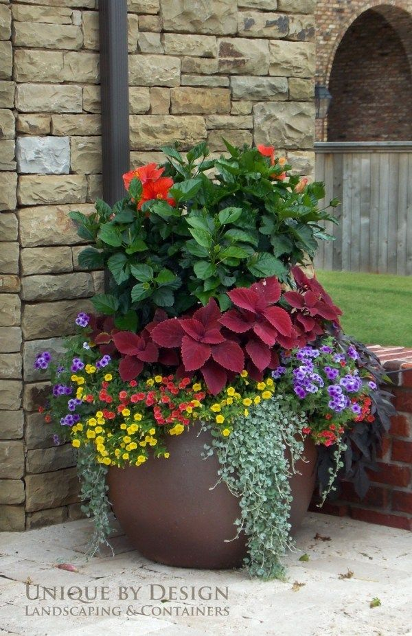 awesome Unique by Design l Helen Weis  the colors of each plant work so beautifully toge 8 Stunning Container Gardening Ideas Gardens Spring and