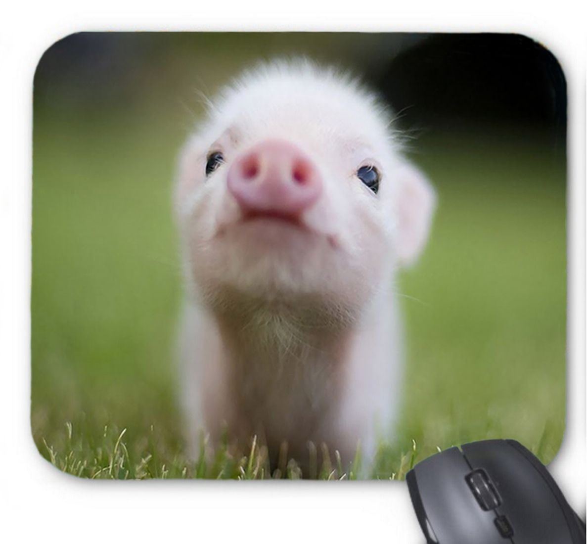 Cute Baby Teacup Pigs Non Slip Mouse Pad Amazon Adorable Appearance Small Dp B01HRKR2HOieUTF8Version1entries0