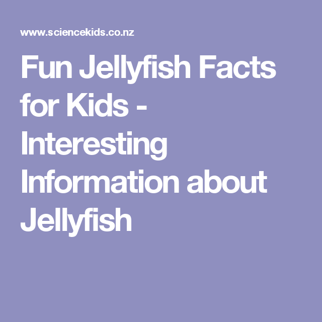 Fun Jellyfish Facts for Kids - Interesting Information about ...