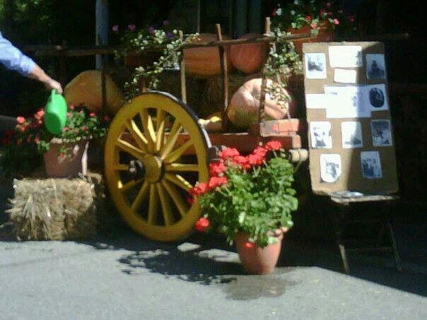 #pumpkin festa in Petrici october #maremma #tuscany