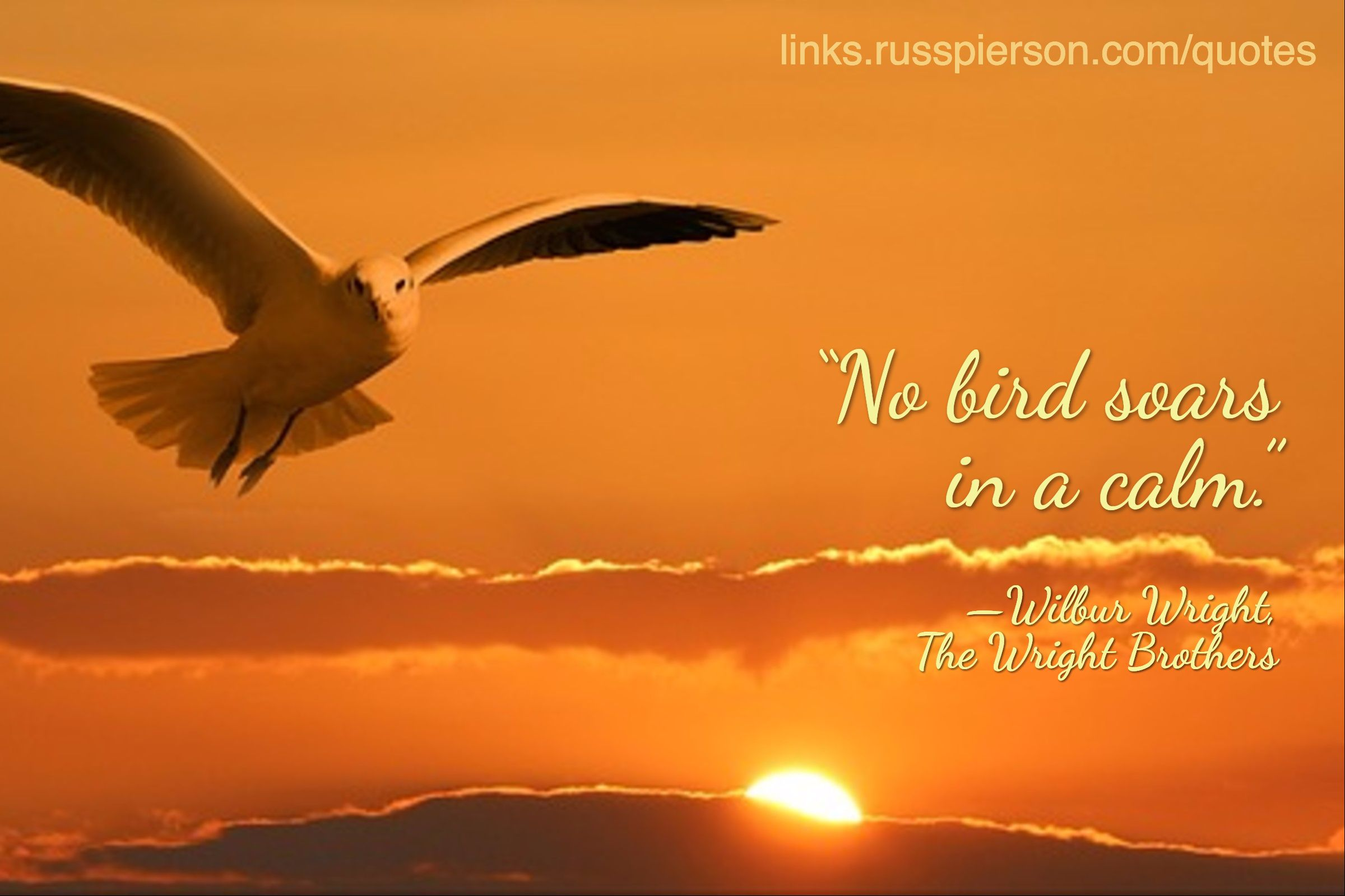 "The Wright Brothers Quotes No Bird Soars In A Calm."" —Wilbur Wright The Wright Brothers ."
