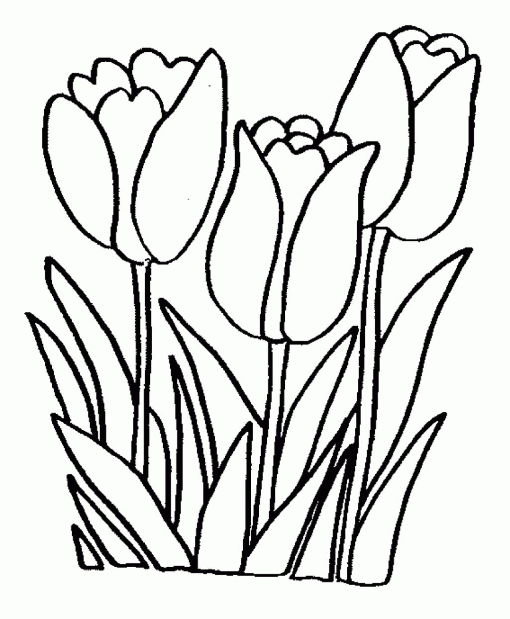 a single flower free printable coloring pages for when they flower