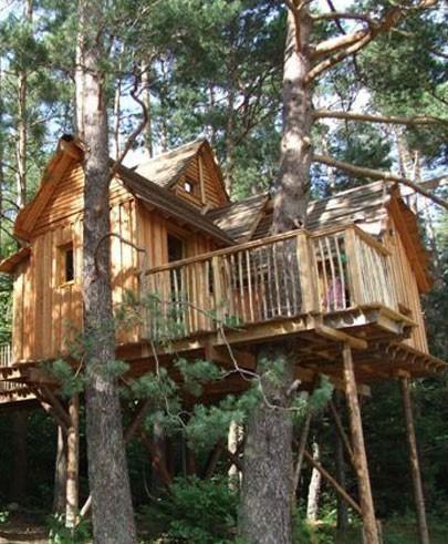 Cabanes dans les arbres nids des vosges chambres d 39 h tes champdray cabanes cabane maison - Chambre hote dans les arbres ...