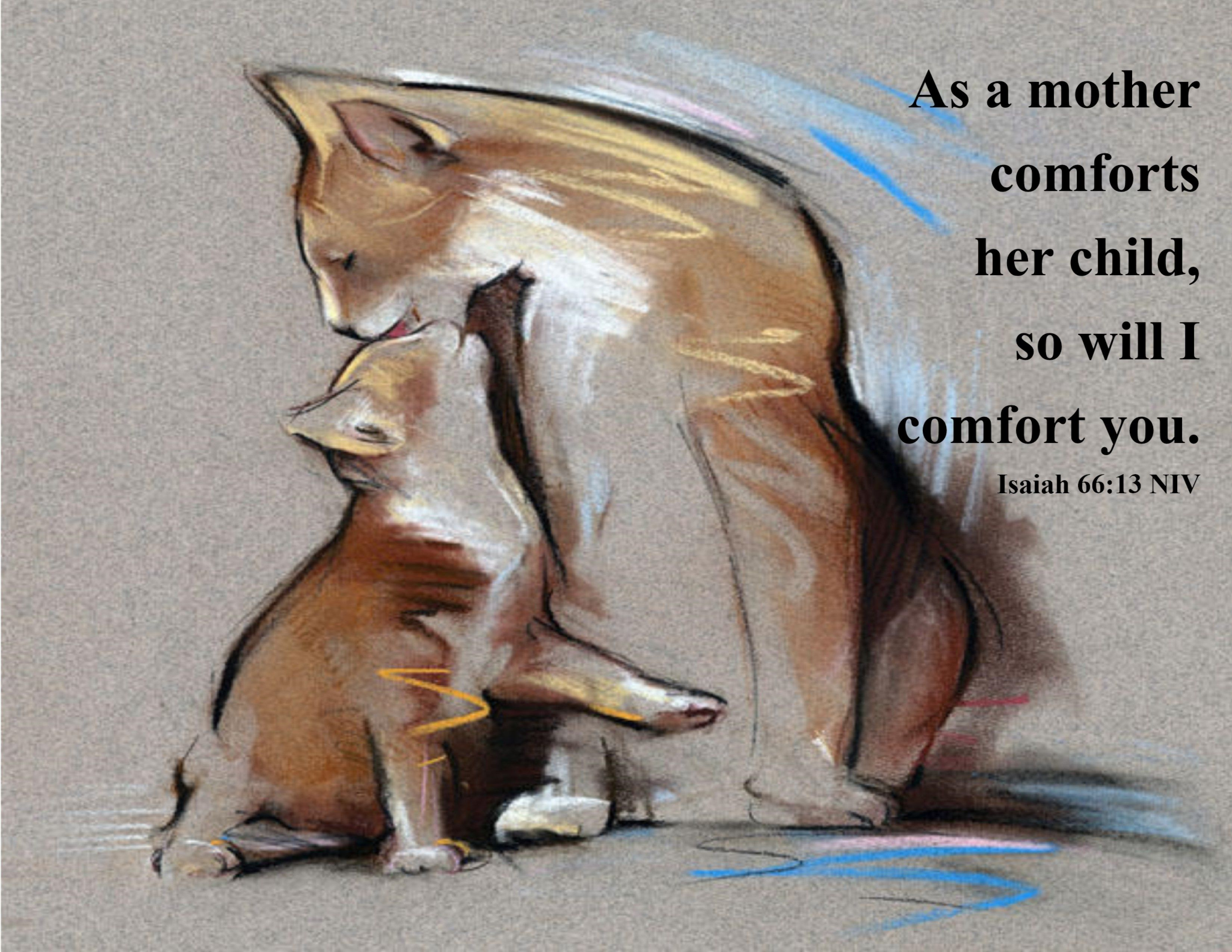A Mother's Comfort