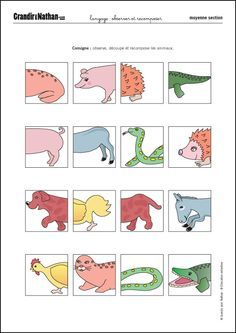 zoo activités maternelle | 1000 idées sur le thème Zoo ...