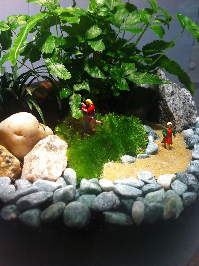 Terrarium Their Own Little World Www Gardensinglass Com