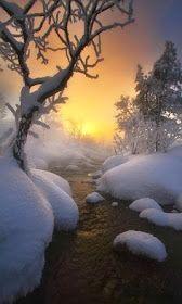 The Snow Sunset