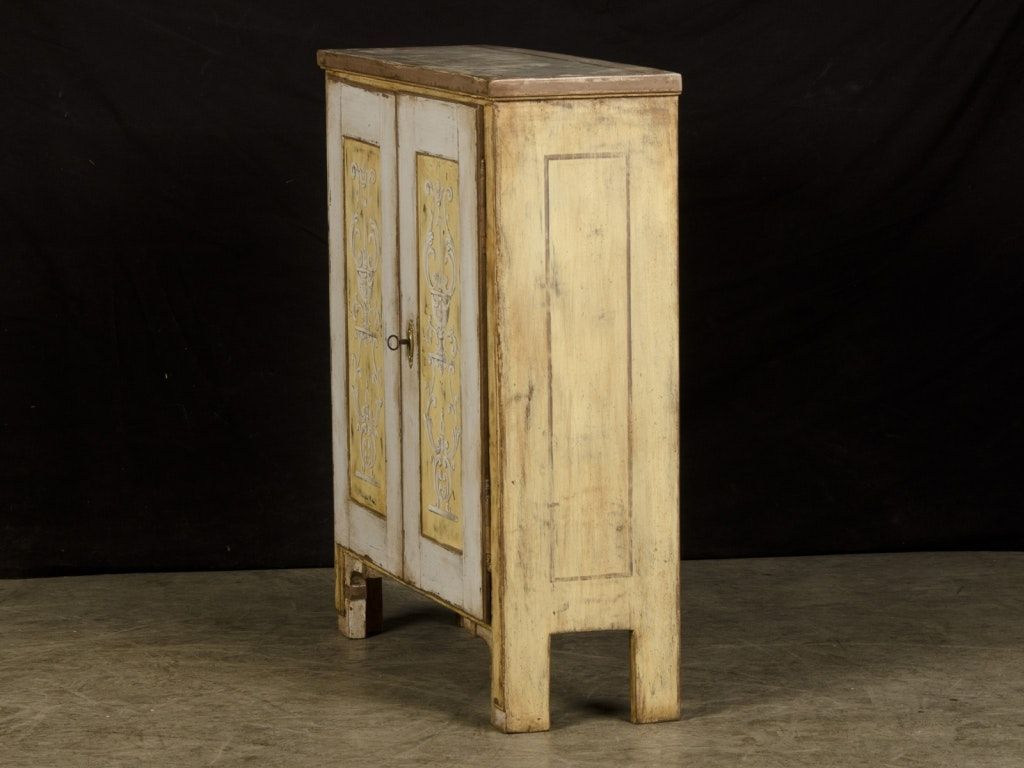 Shallow Depth Storage Cabinets