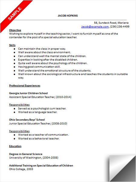 Resume Format For A Teacher Alluring Special Education Teacher Resume Sample  Resume Examples .