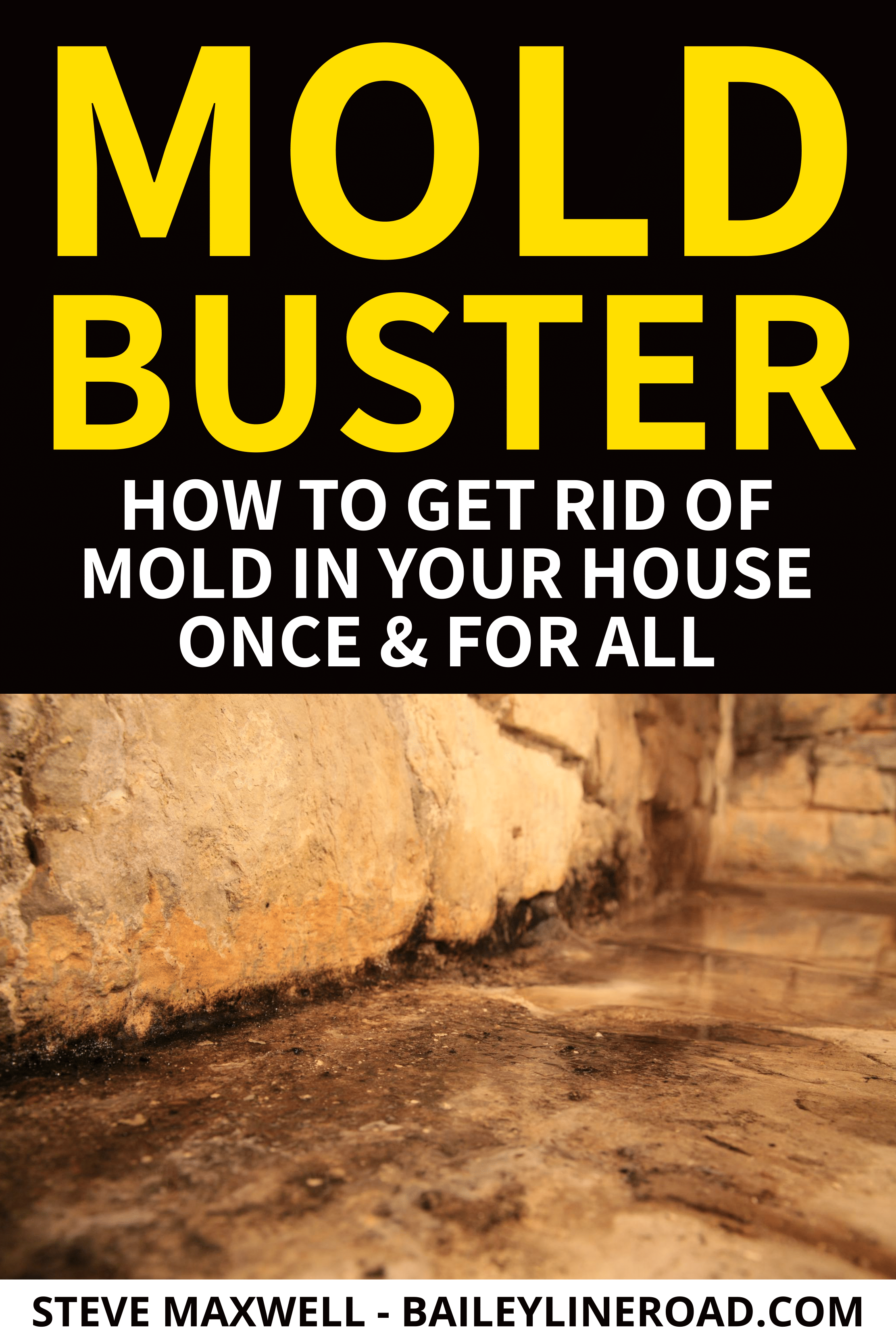 How To Get Rid Of Mold A Detailed Online Course For Homeowners Get Rid Of Mold Mold In Bathroom Mold On Bathroom Ceiling