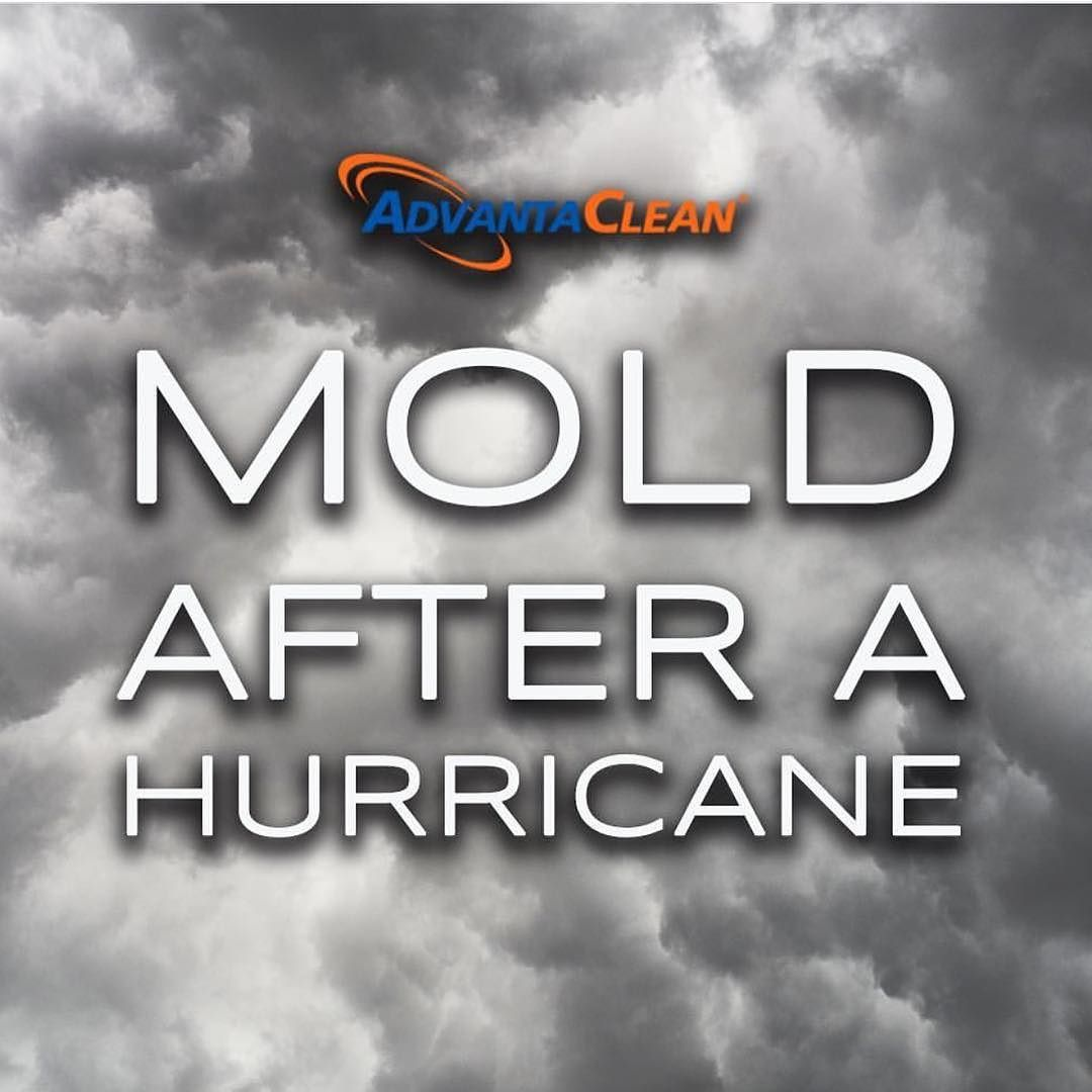 What To Do In Case Of Water Damage After A Hurricane Or Major