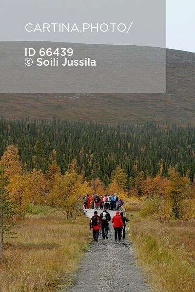 Retkeilijät Vuontisjärvellä, Enontekiö (66439). harrastus, ihminen, ihmiset…