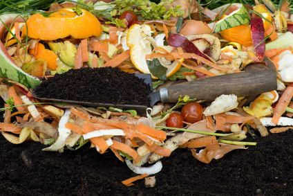 Home Channel TV Blog: Home Tip Tuesday: Composting Tips