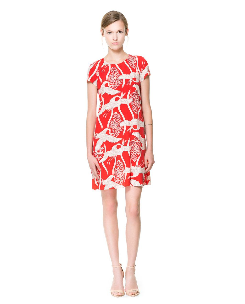 Image of bird print dress from zara stylish pinterest zara