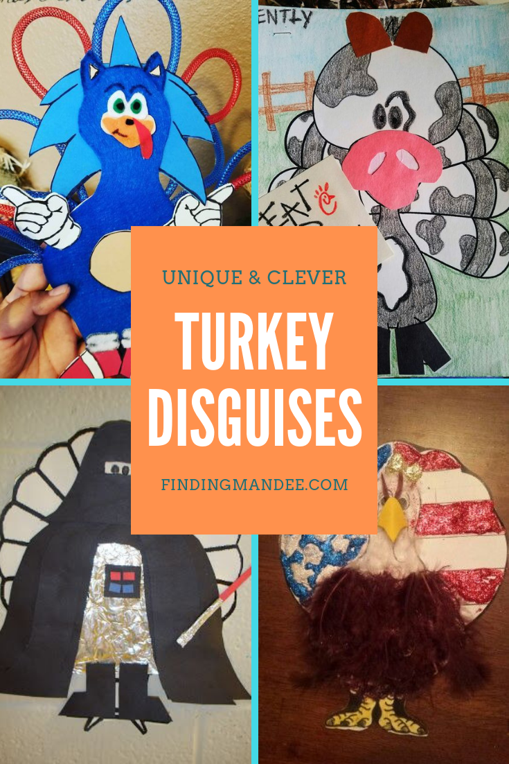 47 of the Best Turkey Disguises on the Internet | Finding Mandee