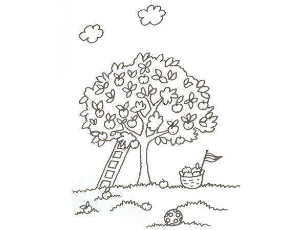 El Arbol De Los Frutos Para NiÑos: Dibujo De Un árbol Con Manzanas Para Colorear Con Niños