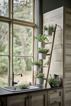 7 id es de supports pour vos plantes d int rieur d co pinterest maison jardins et plante. Black Bedroom Furniture Sets. Home Design Ideas