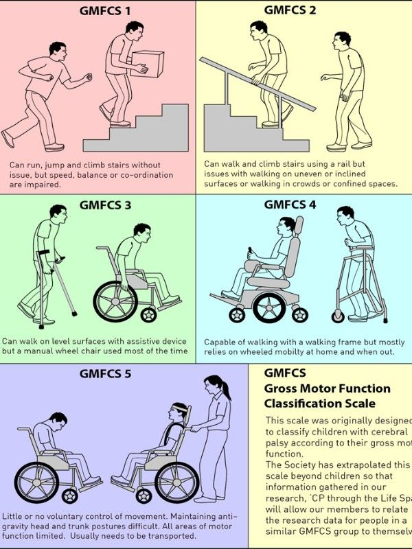 Gross Motor Function Scale Cerebral Palsy Society Of Nz Cerebral Palsy Occupational Therapy Equipment Therapy Equipment