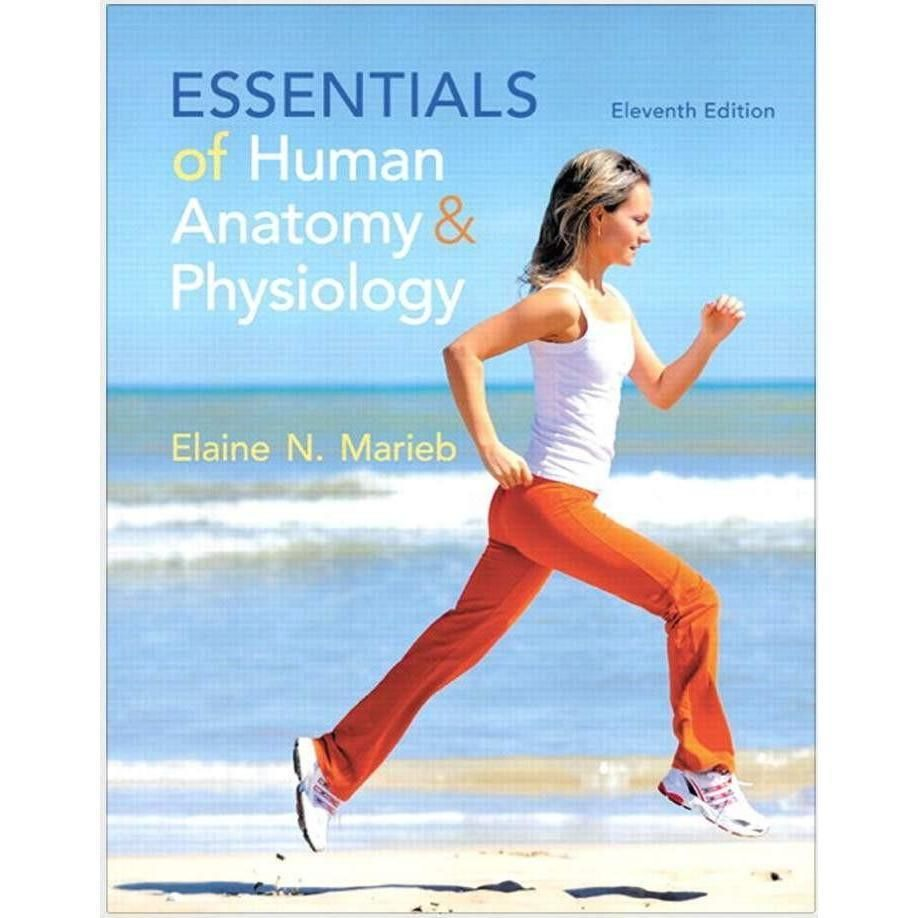 Essentials Of Human Anatomy And Physiology 11th Edition Pdf Human