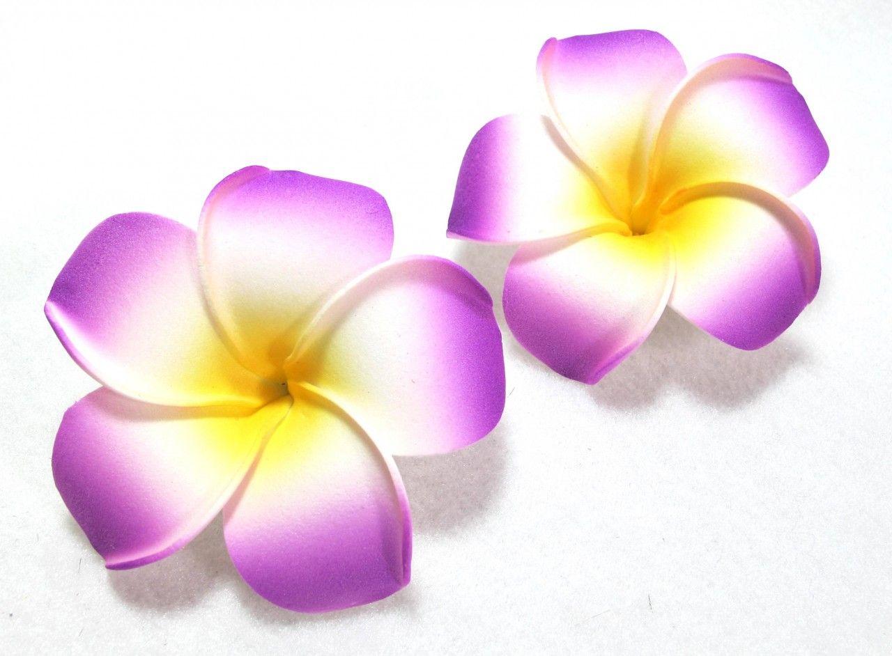 Plumeria Clipart Plumeria Tattoo Flower Drawing Plumeria