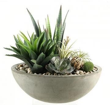 Mixed Succulents In Planter Artificial Plants Faux Plants Homedecorators Com Accessories
