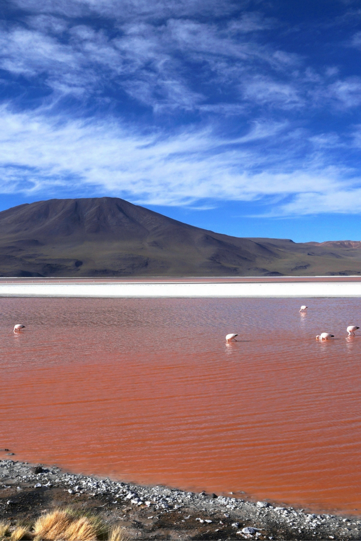 Contact Support South America Travel Bolivia Travel Travel South