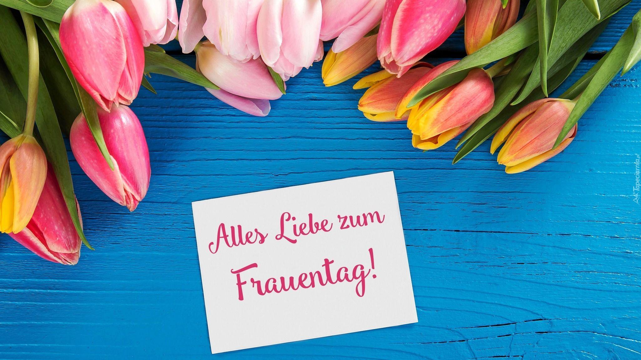Dzien Kobiet Kwiaty Kolorowe Tulipany Kartka Zyczenia Niebieskie Deski Tableware