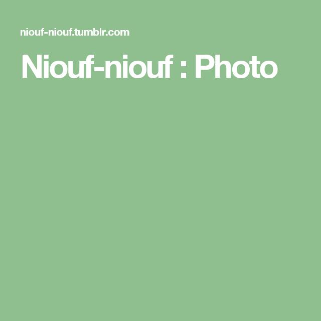 Niouf-niouf : Photo