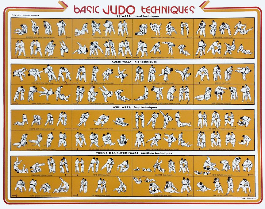Judo Basic Throws Judo Judo Throws Grappling Martial Arts