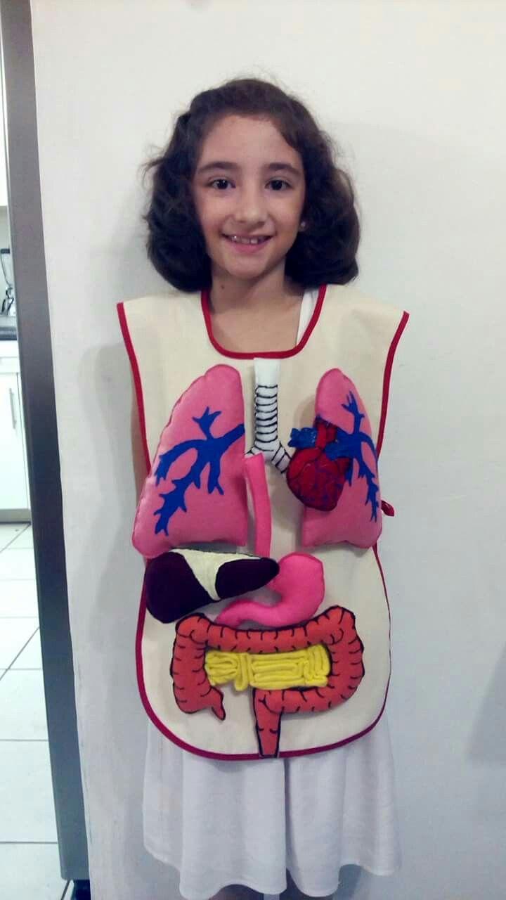 Mandil con órganos y/o sistemas del cuerpo humano   Tareas Escolares ...